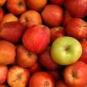 Dieta de las manzanas