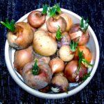 Envase con cebollas
