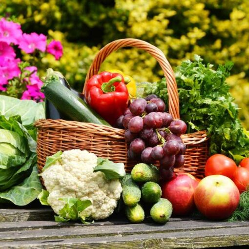 cesta-de-vegetales-organicos