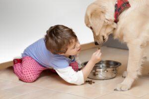 Mejores mascotas para niños