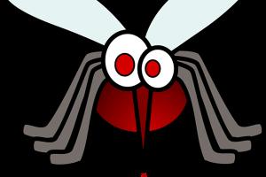 Virus Zika y embarazo
